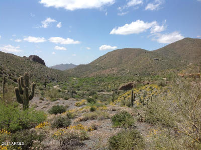 Scottsdale Residential Lots & Land For Sale: 42449 N Charbray Drive