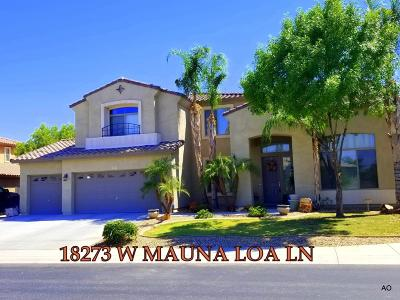 Surprise Single Family Home For Sale: 18273 W Mauna Loa Lane