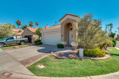 Gilbert Single Family Home For Sale: 517 S Paradise Drive