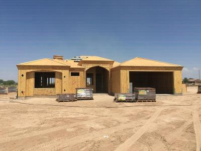 Casa Grande Single Family Home For Sale: 439 S David Circle