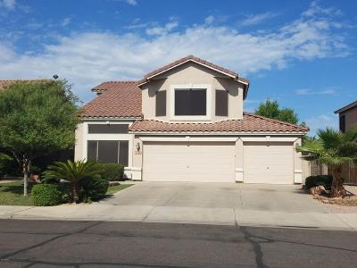 Gilbert Single Family Home For Sale: 1338 S Palomino Creek Drive