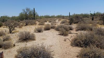 Scottsdale Residential Lots & Land For Sale: 28747 N 76th Street