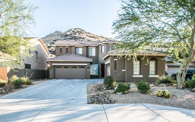 Phoenix Single Family Home For Sale: 6017 W Spur Drive