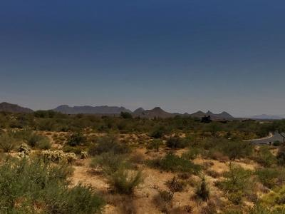 Scottsdale Residential Lots & Land For Sale: 38243 N 109th Street