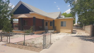 Douglas Single Family Home For Sale: 638 E 6th Street