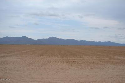 Goodyear Residential Lots & Land For Sale: 19001 S Rainbow Valley Road