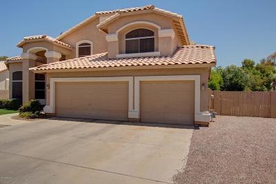 Glendale Single Family Home For Sale: 19229 N 78th Lane
