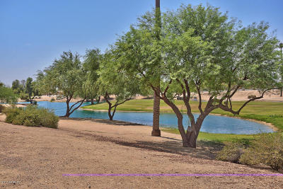 Sun City Single Family Home For Sale: 22034 N Golf Club Drive
