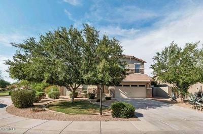 Single Family Home For Sale: 3364 E Hawk Place