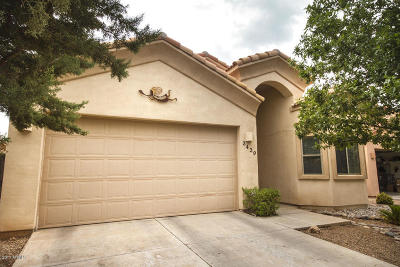Single Family Home For Sale: 3439 N Camino Perilla
