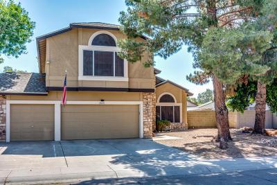 Chandler Single Family Home For Sale: 2825 N Villas Lane