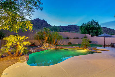 Fountain Hills Single Family Home For Sale: 13410 N Manzanita Lane