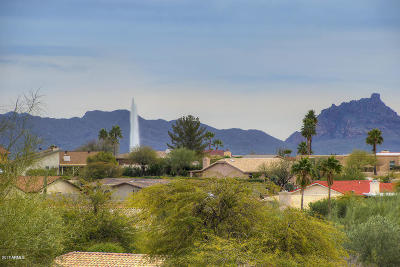Fountain Hills Single Family Home For Sale: 15039 N Greenhurst Avenue