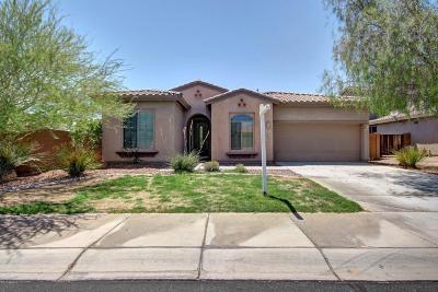Peoria Single Family Home For Sale: 29964 N 127th Avenue