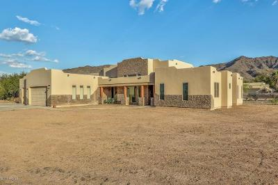 Laveen Single Family Home For Sale: 3219 W Olney Avenue