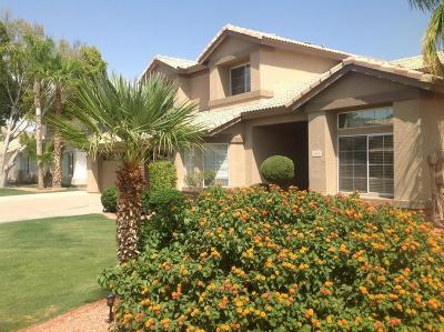 Phoenix Single Family Home For Sale: 14813 S 25th Way
