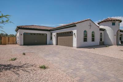 Queen Creek Single Family Home For Sale: 22429 E Sentiero Court