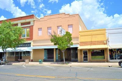 Douglas Commercial For Sale: 921 N G Avenue