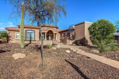 Mesa Single Family Home For Sale: 3227 N Canyon Wash Circle