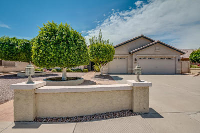 Mesa Single Family Home For Sale: 2229 E Knoll Street