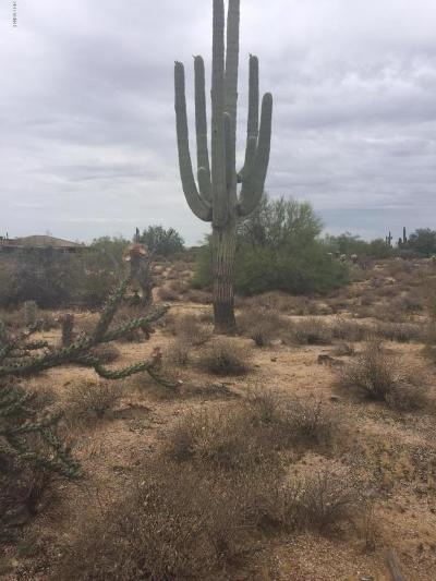 Scottsdale Residential Lots & Land For Sale: 6874 E Lomas Verdes Drive