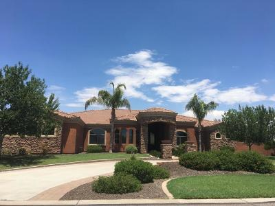 Queen Creek Single Family Home For Sale: 19862 E Sunset Drive