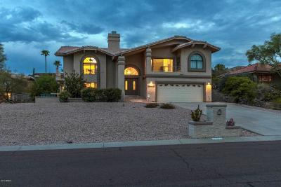 Fountain Hills Single Family Home For Sale: 17123 E Malta Drive