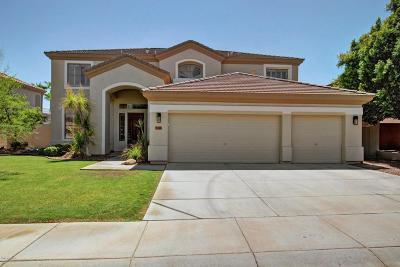Single Family Home For Sale: 1421 W Saltsage Drive
