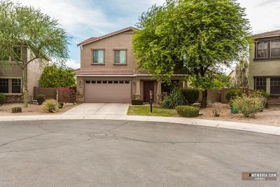 Maricopa Single Family Home For Sale: 43558 W McClelland Court