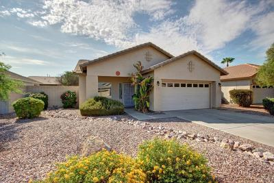 Single Family Home For Sale: 3609 S Loback Lane