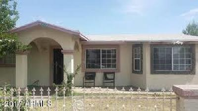 Pirtleville AZ Single Family Home For Sale: $100,000