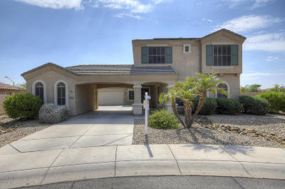 Litchfield Park Single Family Home For Sale: 5929 N 126th Avenue