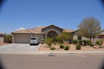 Litchfield Park Single Family Home For Sale: 18314 W San Juan Avenue