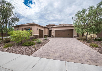 Florence Single Family Home For Sale: 5619 W Admiral Way