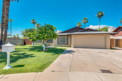 Tempe Single Family Home For Sale: 1990 E Rice Drive