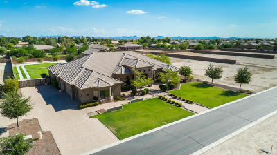 Goodyear AZ Single Family Home For Sale: $925,000