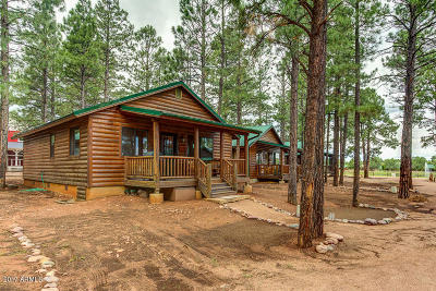 Overgaard Single Family Home For Sale: 2708 High Pine Loop
