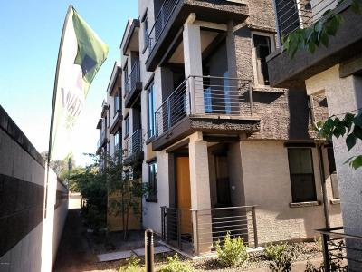 Tempe Rental For Rent: 2090 S Dorsey Lane #1045