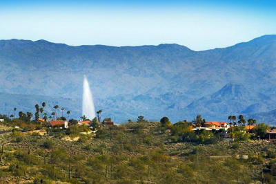 Fountain Hills Residential Lots & Land For Sale: 10031 N Palisades Boulevard