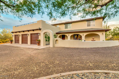 Single Family Home For Sale: 31032 N Rancho Tierra Drive