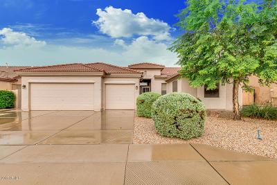 Mesa Single Family Home For Sale: 10240 E Posada Avenue