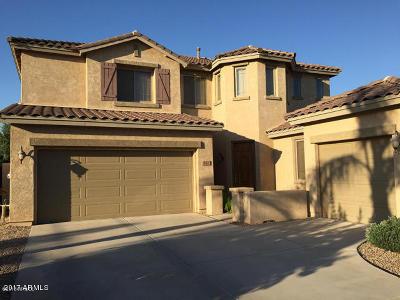 Chandler Rental For Rent: 447 W Desert Broom Drive