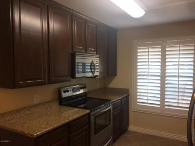 Chandler Rental For Rent: 725 N Dobson Road N #220