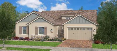 Gilbert Single Family Home For Sale: 4510 E Skousen Street E