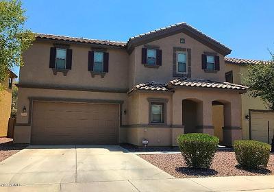Gilbert Rental For Rent: 1203 E Canyon Creek Drive