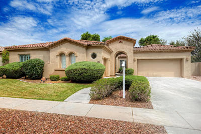Gilbert Single Family Home For Sale: 4636 E Carriage Court
