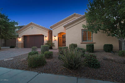 Chandler Rental For Rent: 30 W Tonto Drive