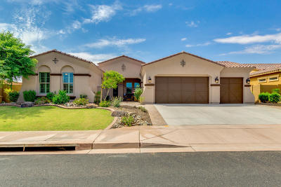 Peoria Single Family Home For Sale: 12777 W Via Caballo Blanco