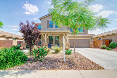 Queen Creek Single Family Home For Sale: 4421 W Goldmine Mountain Drive