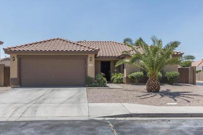 Mesa Single Family Home For Sale: 11463 E Quade Avenue